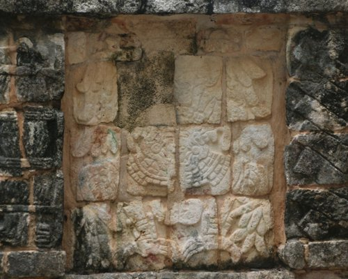 Decrypts the historical legacy of the Maya