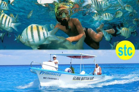 Cozumel: Snorkeling in Glass Bottom Boat 2 hours