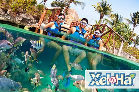 Xel Ha All Incluisive